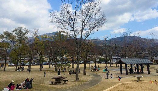 宝が池 子供の楽園|京都市内の電車ですぐ行ける大型公園!自然いっぱいで幼児から小学生ならきっと大満足